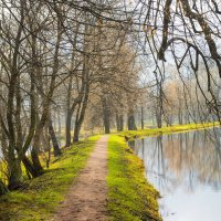 тропинка вдоль Бельведерских прудов :: Евгений Миллер
