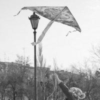 Девочка с воздушным змеем :: Арсений Корицкий