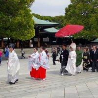 Красивая японская свадебная церемония :: Михаил Рогожин