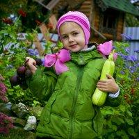 урожай :: Виталий Мишутин