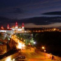 Ночной вид на старую крепость в г.Каменец-Подольский :: Александр Крупский