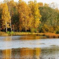 осень :: Наталья