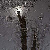 Немного солнца в холодной воде... :: Людмила Синицына