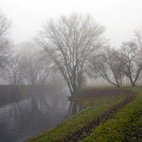 Туман :: Николай Климович