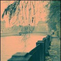 Обратный cross по Питеру. Осенний взгляд из Летнего... :: Макс Балакин