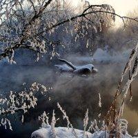 Прильни душою к стылому закату… :: Александр | Матвей БЕЛЫЙ