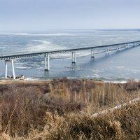 Президентский мост. Весна 2013 :: Vladimir Karpov