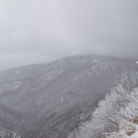 зима :: Марина Рыкова