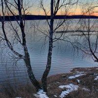 Тропинка к озеру. :: Наталья Юрова