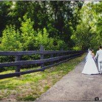 Свадьба Александра и Юлии :: Николай FROST
