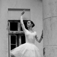 Белый лебедь на развалинах :: Надежда Зайцева