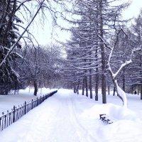 Начало зимы 2 :: Оксана Баллыева