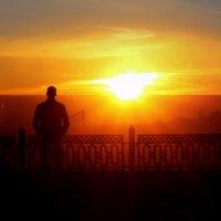 Очарованный солнцем. :: Денис Антонов