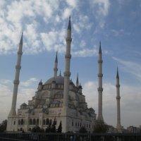Мечеть :: ирина гунгор