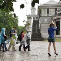 А дождь был попросту смешной —не проливной и не сплошной :: Ирина Данилова