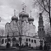 Новодевичий :: Сергей Котусов