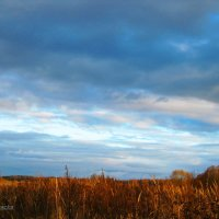 Небо и земля. :: Антонина Гугаева