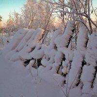 Засугробило :: Анна Разгуляева