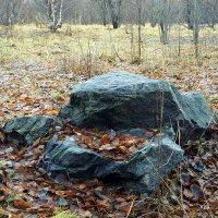 Пейзаж с камнем :: Елена Перевозникова