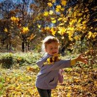 Если листья уже не падают... :: Дмитрий Макеев