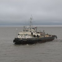 на море :: Дмитрий Прокин