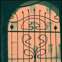 Обратный cross по Питеру. Городские цветы. :: Макс Балакин