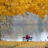 Осень :: Юрий Шабанов