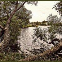 Природа :: vadim