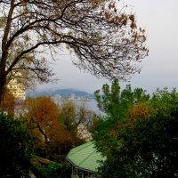 Ялта, осень, с гор туманы... :: Ирина Сивовол