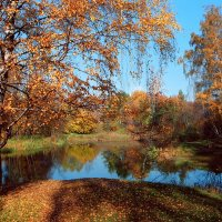 Осень в Ботаническом саду. :: Николай Кондаков
