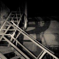 Лестница Не В Небо :: Александр Тристан