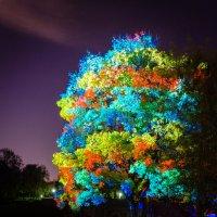 3D дерево (вариант 2) :: Анжелика Литвинова
