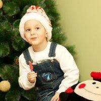 в ожидании Деда Мороза :: Tatiana Florinzza