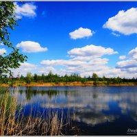 Озеро. :: Антонина Гугаева