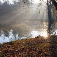 Утро.Солнце.Первый луч появился из-за ... :: Vadim77755 Коркин
