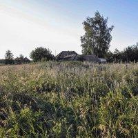 сельский пейзаж 2 :: павел бритшев