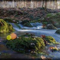 осенний поток :: Sergey Bagach