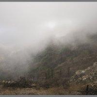 La Gomera :: Jossif Braschinsky