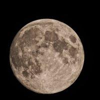 Луна :: Александр Афромеев