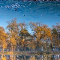 Осень посмотрелась в зеркало ... :: Vadim77755 Коркин