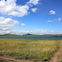 Тропинка к озеру :: Наталья Юрова