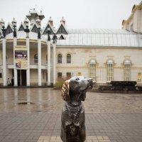 Бим :: Дмитрий Гридчин