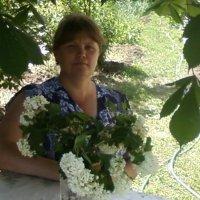 дом :: лилия пономарёва