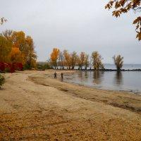 Прогулка в Осень :: Svetlana Kravchenko