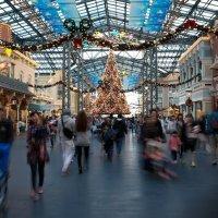 В японском Диснейленде новогодняя атмосфера уже в ноябре :: Sofia Rakitskaia