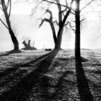 Утро,по парку тихо бродят тени... :: Vadim77755 Коркин