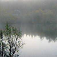 Туман...Туман... :: Юрий