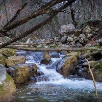 горная река :: Sergey Bagach