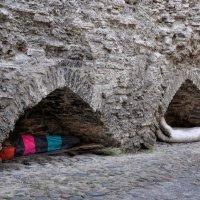 Кто рано встаёт, тому Бог подаёт... :: Ирина Данилова