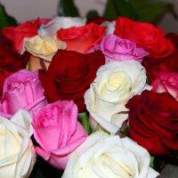 Букет роз :: Светуля Тонких
